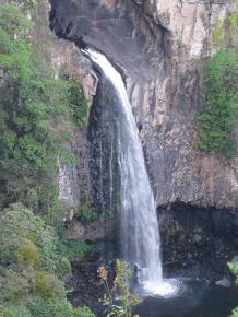 cascada crop